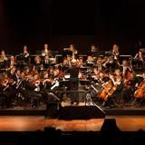 Orchestra Suonintorno
